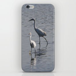 Egrets iPhone Skin