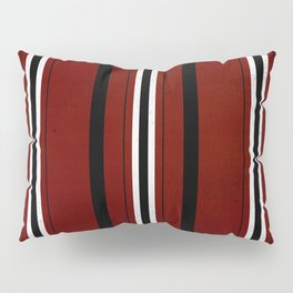 The Levite cloth of a Hebrew slave! Pillow Sham