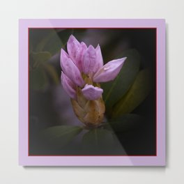 when winter is gone, spring will come -1- Metal Print