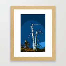 Wind Blasted Framed Art Print