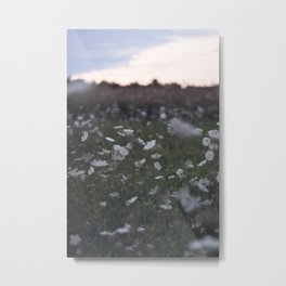 The Meadow of Lace 1 Metal Print
