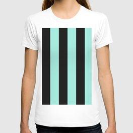 Classic Cabana Stripes in Mint + Black T-shirt