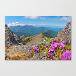 Mount Townsend Spring Canvas Print