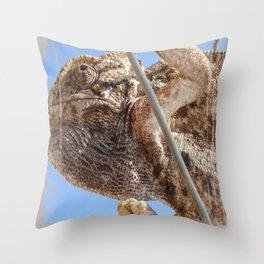 Close Up Of A Climbing Chameleon Throw Pillow