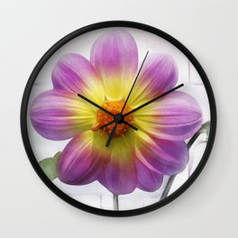 Windows on Nature Wall Clock
