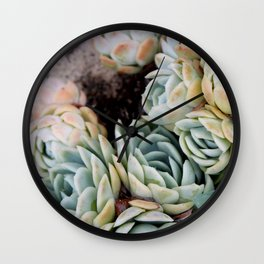 California Potted Succulents Wall Clock