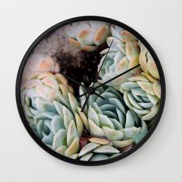 California Potted Succulents Wall Clock