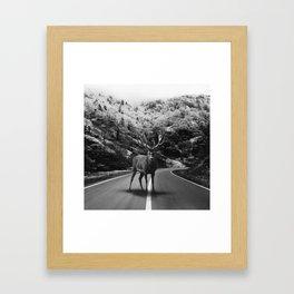 Deer Walker Road Framed Art Print