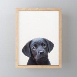 Puppy, Black Labrador, Baby Animals Art Print By Synplus Framed Mini Art Print