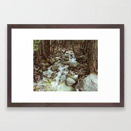 forest flow Framed Art Print