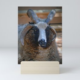 Jacob seep Mini Art Print