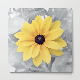 Yellow Grey Flower Photography, Yellow Gray Nature Floral Photography Metal Print