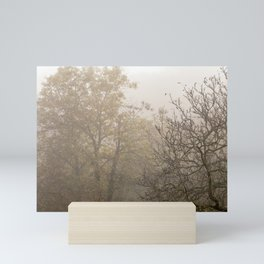 Autumnal naked trees surrounded by fog Mini Art Print