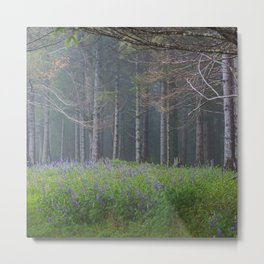 Lupines At The Forest's Edge Metal Print