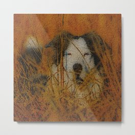 DOG DAY SUNNY AFTERNOON Metal Print