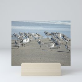 Sandpiper meeting Mini Art Print