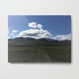 Denali Landscape Metal Print