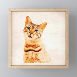 "Sad Kitten saying ""I'm Sorry..."" Framed Mini Art Print"