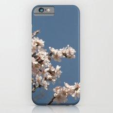 it's spring iPhone 6s Slim Case