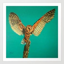 Barn Owl of Craiglwyd Art Print