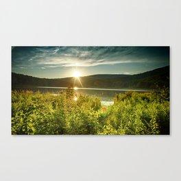 Acclimated Canvas Print