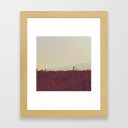 Field of Red Framed Art Print