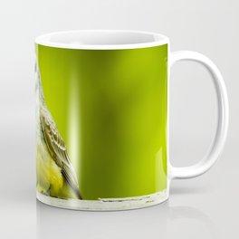 Eye Catching Western Kingbird by Reay of Light Photography Coffee Mug