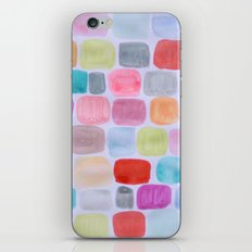 Palette Squares iPhone & iPod Skin