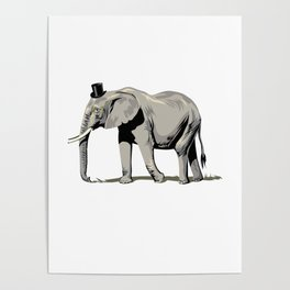 Elephant Wearing Tiny Top Hat Poster