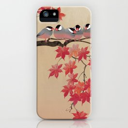 Java Sparrows in Japanese Maple Tree iPhone Case