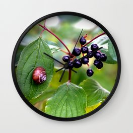 Poison or not : Snail with berries Wall Clock