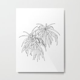 Henkelii Tree Leaves Drawing (black on white) Metal Print