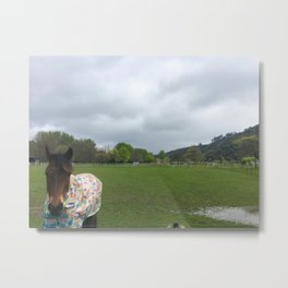 Stormy Day Horse Metal Print