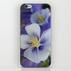 Purple Stars iPhone & iPod Skin