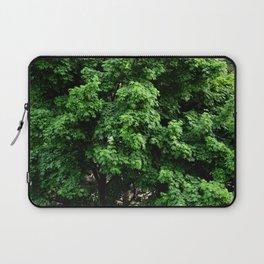 Green Maple Laptop Sleeve