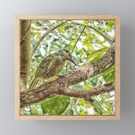 Bird on a branch Framed Mini Art Print