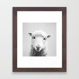 Sheep - Black & White Framed Art Print