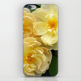 English Rose Collection iPhone Skin