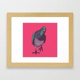 Pop Pigeon Framed Art Print