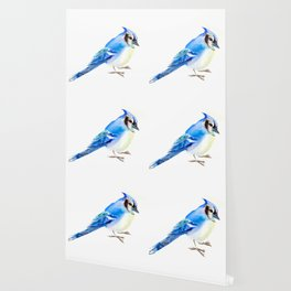 Blue Jay design. blue jay home decor Wallpaper