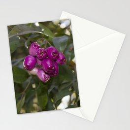 blackberry love Stationery Cards