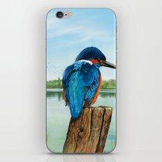 Martin Pescatore nella riserva naturale di Nazzano iPhone & iPod Skin