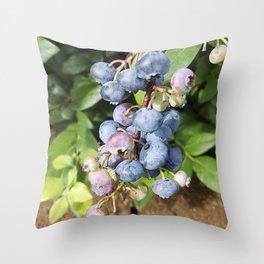 Ready to pick blueberries? Throw Pillow