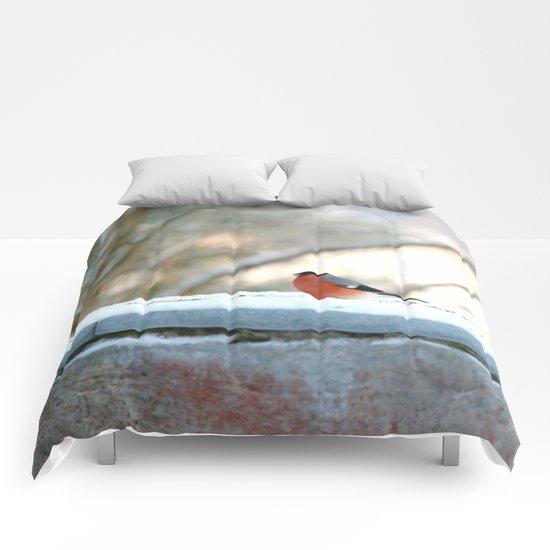 Red Plumage   Comforters