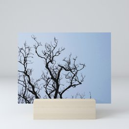 Stretching dark bare branches and blue sky Mini Art Print