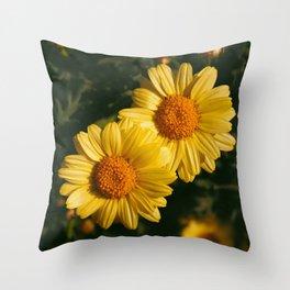 Yellow daisies in the garden Throw Pillow