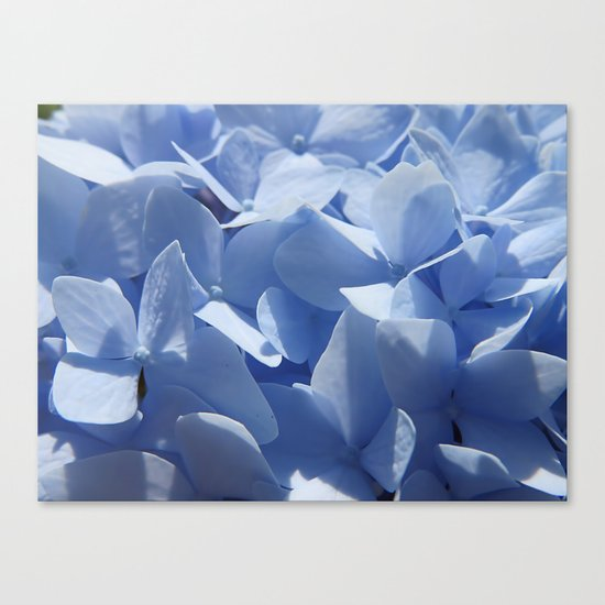 Blue hydrangea in LOVE- Flower floral Canvas Print