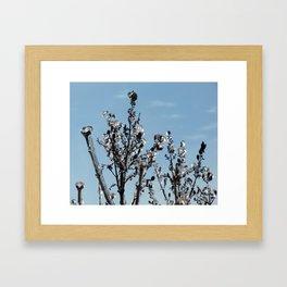 Bijoux Framed Art Print