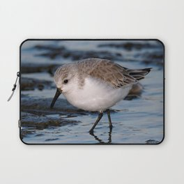 A Strolling Sanderling Laptop Sleeve