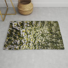 Field of Chamomile Rug